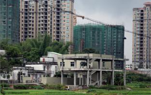 Cina 2014